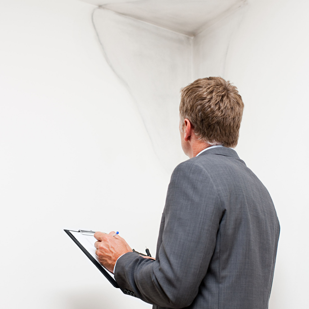 Defect Analysis Brawdia Building Consultancy